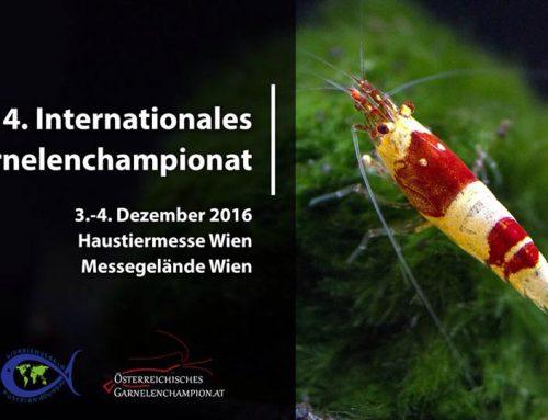 4. Internationales Garnelenchampionat, 2016, Bécs